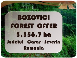 Forest Offer Bozovici Judetul Caras-Severin
